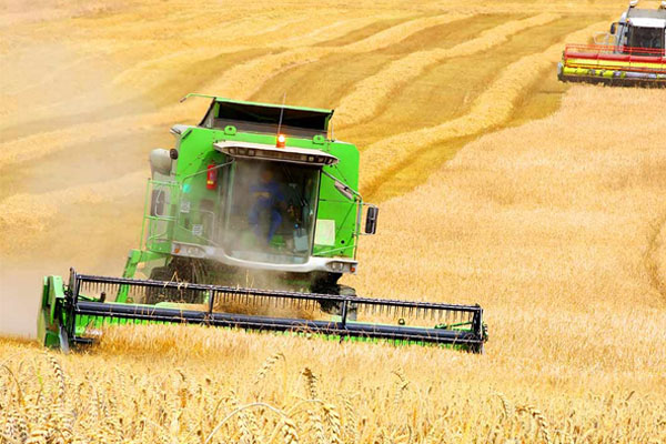 Agricultural-Hydraulic-Hoses-Repairs